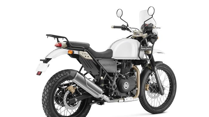 royal himalayan